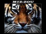 MIZZOU by Hottrockin, Rework gallery