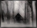 In The Fog by traceyrn, Photography->Manipulation gallery