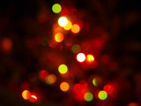 Christmas Tree by gbo911, holidays->christmas gallery
