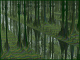 Fractal Swamp by Joanie, abstract->fractal gallery