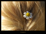 Summer by jesouris, Photography->Textures gallery