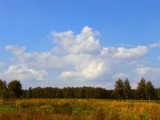 A little bit of autumn by annie100, Photography->Landscape gallery