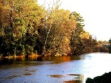 Fall on Broad River by Flurije, photography->shorelines gallery
