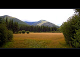 Huckleberry Meadow by Nikoneer, photography->mountains gallery