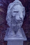 Leonine Sentinal by mesmerized, photography->sculpture gallery