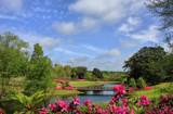 Mirror Lake Overlook II by allisontaylor, photography->gardens gallery