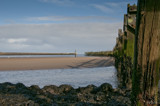 Amble Wood Sky Sea by slybri, photography->shorelines gallery