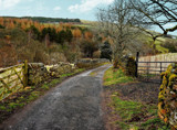 A road less travelled by biffobear, photography->landscape gallery