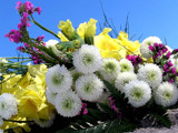 Birthday Wishes for a very Sweet Friend, Bob!! by marilynjane, Photography->Flowers gallery