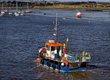 The Lobster boats are a coming by biffobear, photography->boats gallery