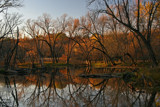 Evening's Last Golden Light by Silvanus, photography->landscape gallery