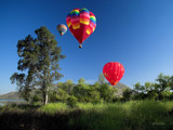 3 Balloons by Surfcat, Photography->Balloons gallery