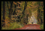 October walk by ekowalska, photography->landscape gallery