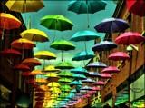 Umbrella Street by Dunstickin, photography->general gallery