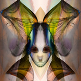 Puppy With A Bow by casechaser, abstract gallery
