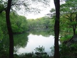 Central Park by fluxingchaos, photography->landscape gallery