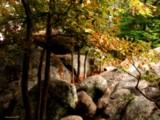 Elephant Rocks by jojomercury, photography->gardens gallery