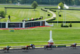 Arlington Racecourse 14 - Crossing the Finish Line by trixxie17, photography->animals gallery