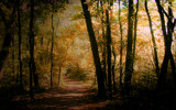 Lingering Still by casechaser, photography->manipulation gallery