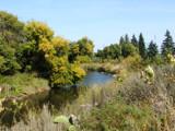 McElroy Park by honey0525, Photography->Landscape gallery