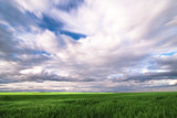 A sky with green stuff at the bottom by taedt2, photography->landscape gallery