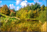 Colorful Wilderness 2 by corngrowth, photography->landscape gallery