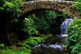 Jesmond Dene 8 by biffobear, photography->bridges gallery
