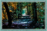 Zeeland Autumn Palette 4 (of 4) by corngrowth, photography->manipulation gallery