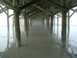 Under The Pier by pantherpsc, Photography->General gallery
