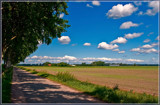 Flat As Flat Can Be by corngrowth, photography->landscape gallery