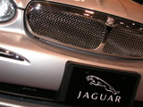 Jag'wär by panda1300, Photography->Cars gallery