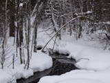 WINTER SEASON 2 by picardroe, photography->nature gallery