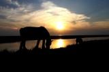 Noordpolderzijl 2 by rozem061, photography->sunset/rise gallery