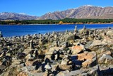The Ultimate Rock Garden by LynEve, photography->shorelines gallery
