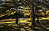 Since Summer by casechaser, photography->manipulation gallery