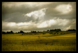 West Acre by JQ, Photography->Landscape gallery