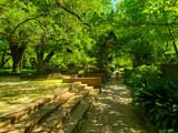 Shadows of Hopeland Gardens by Pistos, photography->gardens gallery