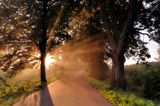 Meet me at a country road by ekowalska, photography->landscape gallery