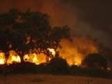 Inferno em Gavião by DGFGaviao, Photography->Fire gallery