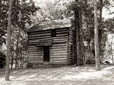 The Daniel Murphree Log Cabin by bfrank, contests->b/w challenge gallery