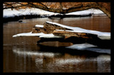 Big Log by tigger3, Photography->Water gallery