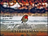 Season's Greeting's by Dunstickin, holidays->christmas gallery