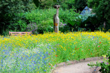 Cottage Garden by braces, Photography->Gardens gallery