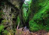 Eagle Creek Gorge 3 by busybottle, photography->landscape gallery
