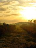 Wetlands Morning by CanoeGuru, Photography->Sunset/Rise gallery
