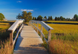 bridge to imagination by solita17, Photography->Landscape gallery