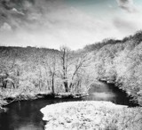 Frosty Snow by Starglow, photography->landscape gallery
