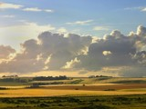 Farmland by pom1, Photography->Landscape gallery