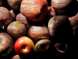 Stoned Apples by pixelpusher, Photography->Manipulation gallery
