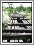 Bridge to nowhere by utshoo, photography->bridges gallery